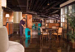 water damage expers