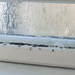 water damage cleanup galveston, water damage restoration galveston, water damage repair galveston